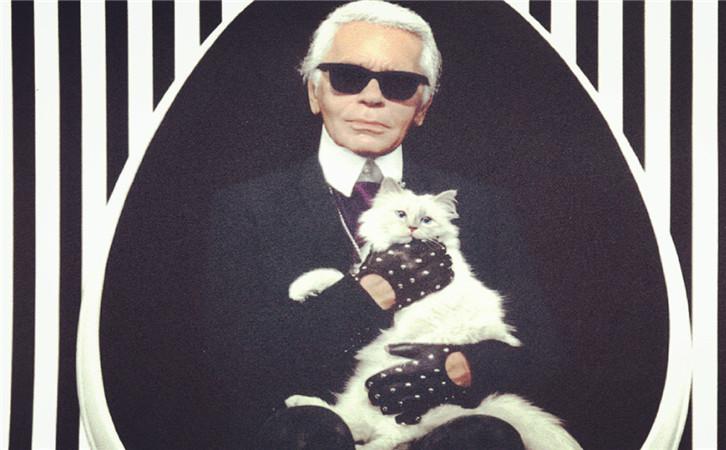 香奈儿老佛爷2亿遗产继承人是只猫?难以想象2