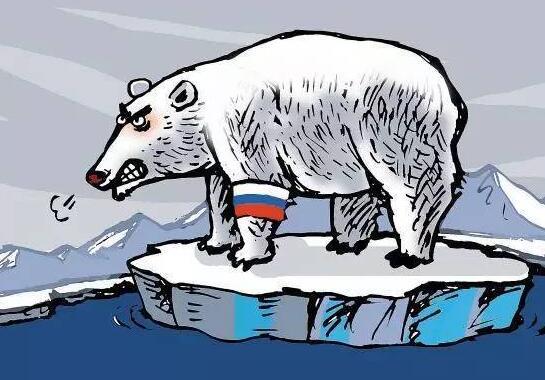 雄安在线,北极熊