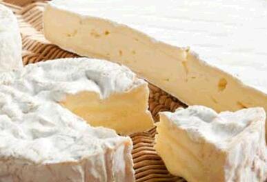3600多年前的奶酪